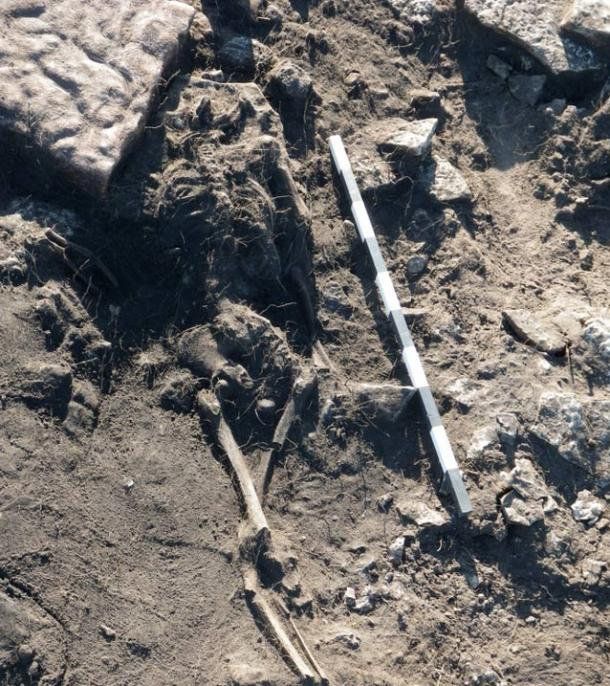 This skeleton of an old man was found lying across the large fireplace in House 52