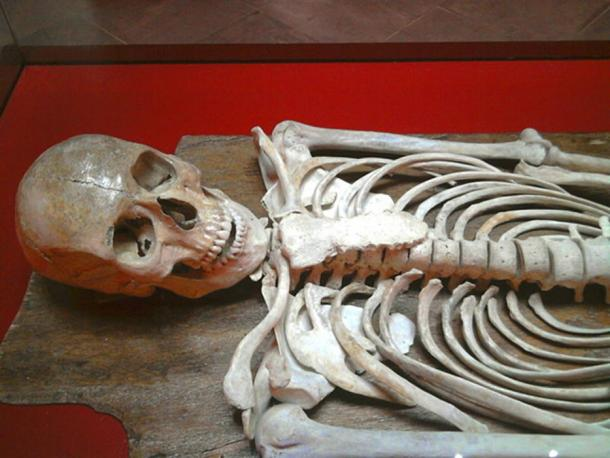 The skeleton of the Young Man of Byrsa that was found in Carthage.