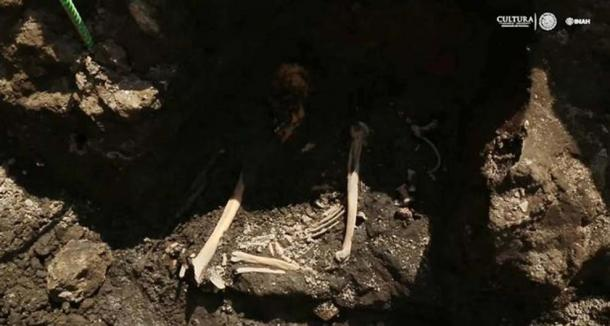 One of the skeletons found at the site.