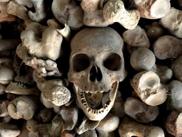 Detail of one of the skulls in the Wamba ossuary.