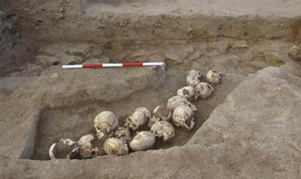 A pit of skulls unearthed at Shimao. (Zhouyong Sun et al. 2017)