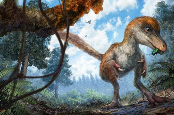 Artist impression of a small coelurosaur on the forest floor. Cheung Chung and Liu Yi