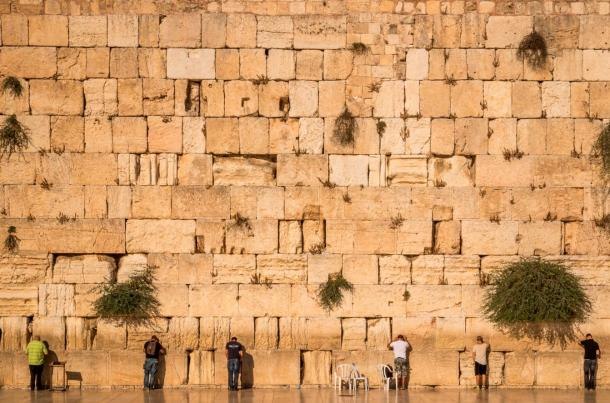 The snake was seeing slithering out of the Western Wall