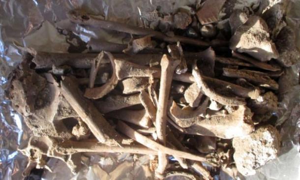 Some of the bones found at the Chapel of Athanasios seem to be female. (Phaidon Hadjiantoniou)