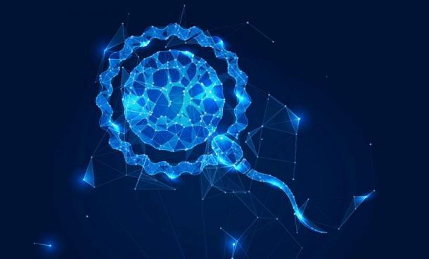 A sperm hologram reveals another dimension of the Serpent mound effigies