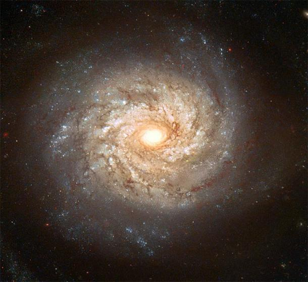 Spiral Galaxy NGC 3982 displays numerous spiral arms filled with bright stars, blue star clusters, and dark dust lanes. (BevinKacon / Public Domain)