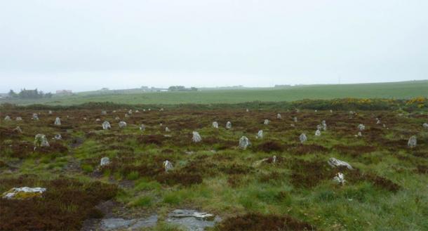 The Hill O Many Stanes, Mid Clyth, Caithness, Scotland. (Otter/CC BY SA 3.0)