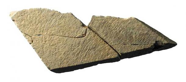 Another stone slab showing the characteristic geometric lines of the Magdalenians. (Natural History Museum)