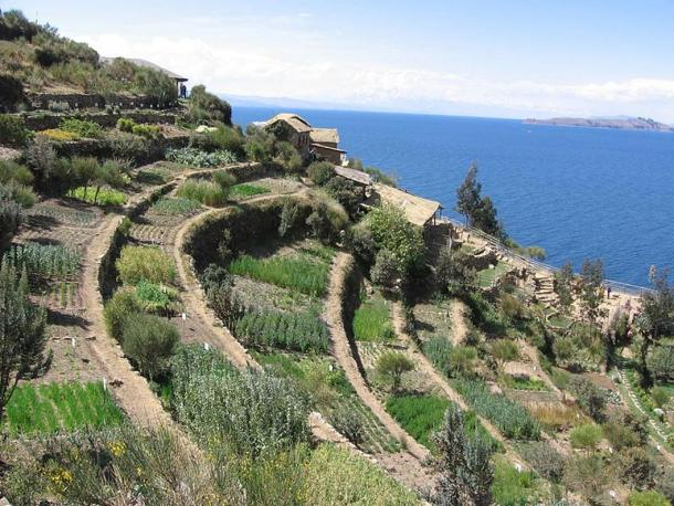 The terraces of Inti Wata, Bolivia