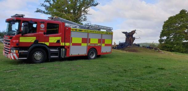 Another image of the end of the Whiteleaved Oak  (Ledbury Fire Station / Hereford Times)