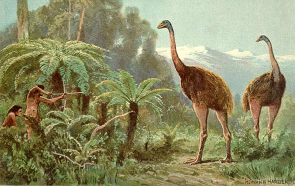 Scientists have said that the environment in which the moa (pictured) once lived no longer exists so it would be problematic to resurrect them