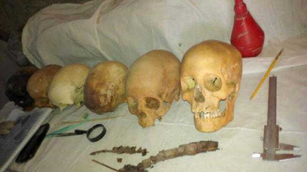 Some of the skulls discovered in the tomb.