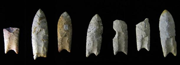 A hallmark of the toolkit associated with the Clovis culture is the distinctively shaped, fluted stone spear point, known as the Clovis point. These Clovis points were from the Rummells-Maske Cache Site, Iowa