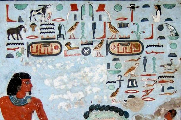 The tomb of Sarenput II in the Qubbet el-Hawa necropolis, near where the remains of an ancient Egyptian woman with cancer were found, included this beautiful mural.