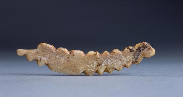 A boar tusk carving of a silkworm unearthed at the Shuanghuaishu site in central China's Henan province. (Image: Xinhua/SCIO)