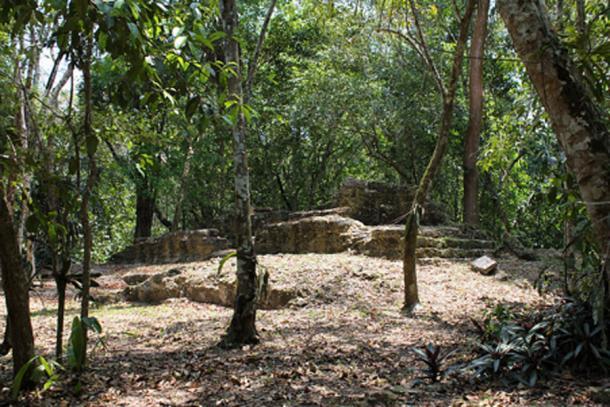 """Tzunu'un (""""hummingbird""""), a Maya house site at El Pilar, Belize. (Kaldari / CC0)"""