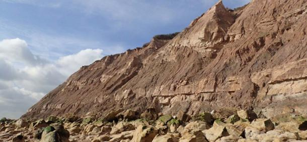 A view of the cliffs near Hastings where the footprints were found. (Neil Davies / University of Cambridge)