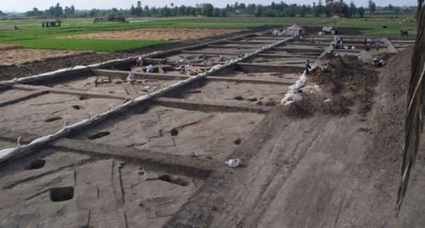 View of the Tell el-Dab'a / Avaris archaeological site. (M Bietak / ÖAI/OREA)