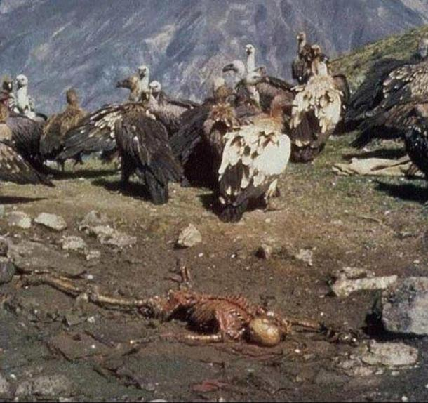 Traditional Tibetan Sky Burial in which vultures pick clean the bones of the dead.