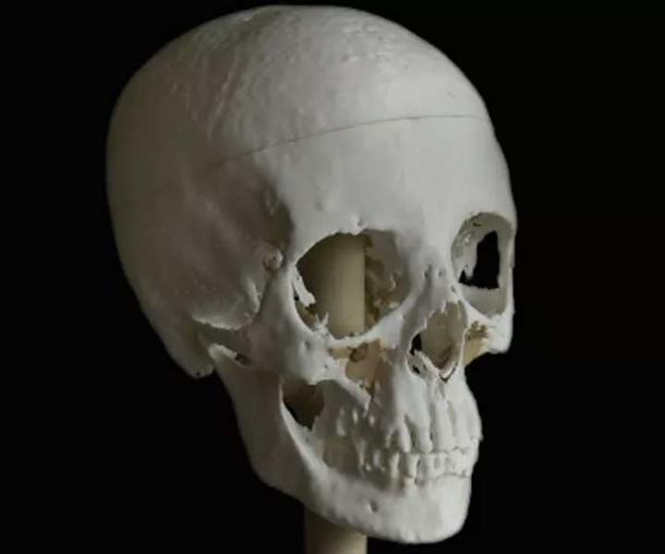 The 3D printed skull of Meritamun took 140 hours to print.
