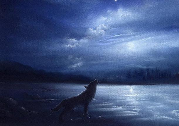 Ireland was once home to wolves.