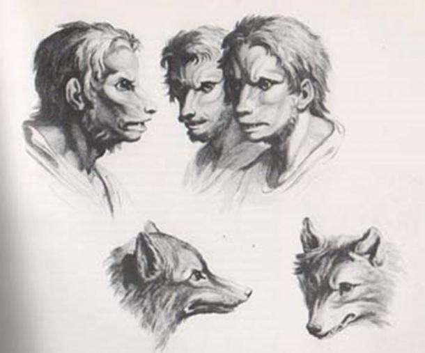 Engravings of wolves and wolf-men