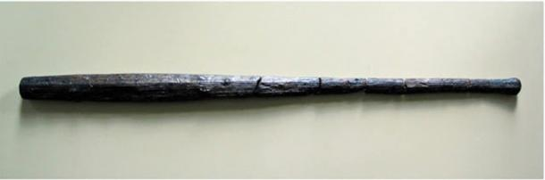 Two wooden clubs found at the site.