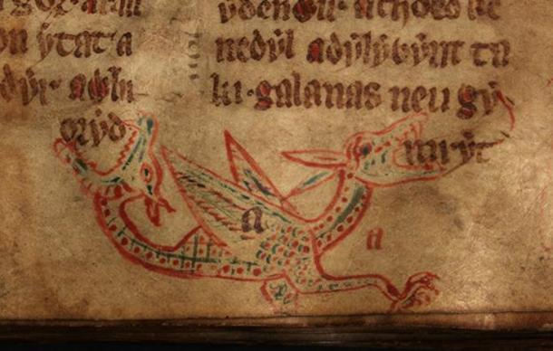 A wyvern from a 14th century Welsh manuscript.