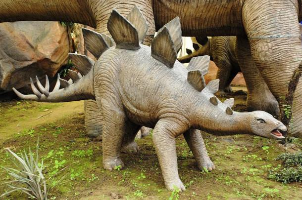 Reconstruction of what a young stegosaurus looked like.