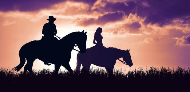 Is sexism exhibited in Bronze Age horse selection?     Source: ginettigino / Adobe Stock