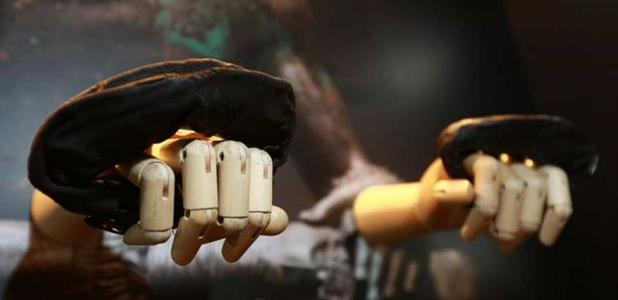 The first ever Roman boxing gloves found in Britain are now on display at Vindolanda.