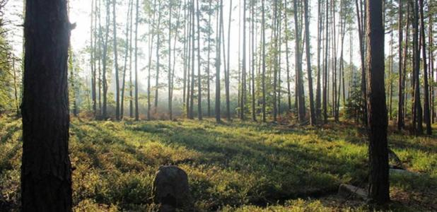 A Polish Stonehenge? Discovery of New Burial Mounds May Rewrite History