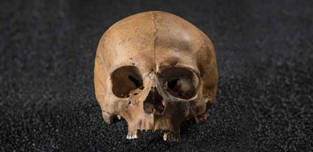 Skull from Roman Dead exhibition at the Museum of London Docklands