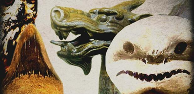 Fossils were viewed very differently in the past; usually through wilder... more fantastical interpretations.