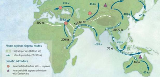 Map of sites and postulated migratory pathways associated with modern humans dispersing across Asia during the Late Pleistocene.
