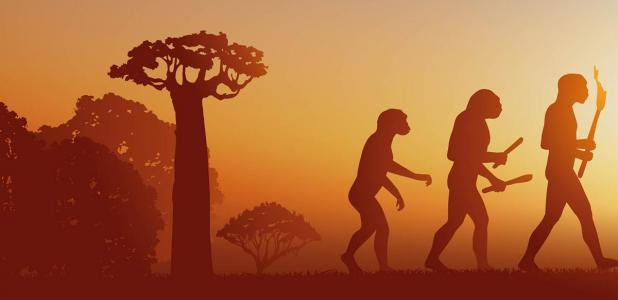 A new study finds that three different human species lived alongside each other. Source: pict rider / Adobe Stock.