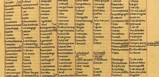 A 12th-century manuscript with material copied from the earlier texts – an important source for Professor Dickey in her research.