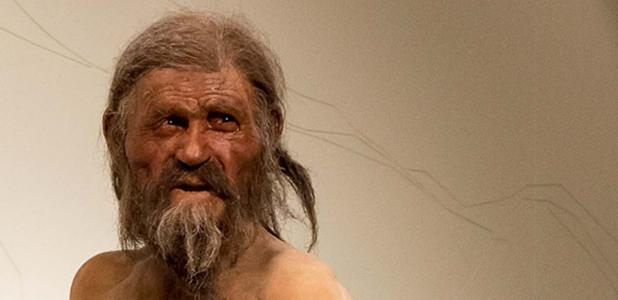 Naturalistic reconstruction of Ötzi - South Tyrol Museum of Archaeology.