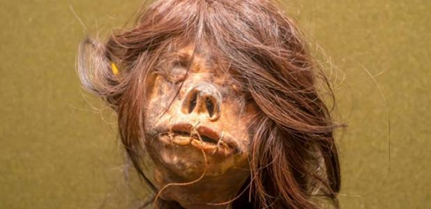"""International"" Shrunken Head From Ecuador Returns Home"