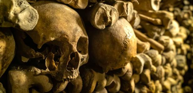 A bone wall was discovered at Saint Bavo's Cathedral in Ghent, Belgium