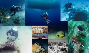 Top Ten Underwater Discovered of 2014