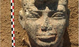 Head of the statue discovered at the site of Dangeil in Sudan.