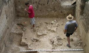 37,000-year-old bones