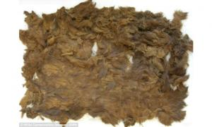 4,000-year-old pelt