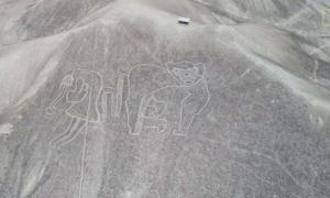 A depiction of a flying human tethered to a monkey. The geoglyphs pre-dating the Nazca lines show many more human designs.