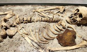 The 800-year-old skeleton found in Bulgaria stabbed through the chest with iron rod.