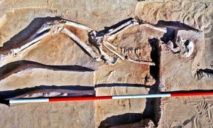 The 40,000-year-old remains of Mungo Man were discovered in 1974 on the southern sector of the eroding Lake Mungo shoreline.