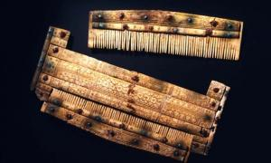 Comb with etui recovered from the Alemannic warrior burials.