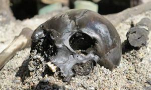 Alken Enge  skulls