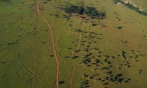 Hundreds of Amazonian Geoglyphs Resembling Stonehenge Challenge Perceptions of Human Intervention in the Rainforest